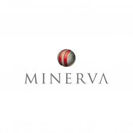BUNKER JOBS: Minerva Seeks Junior Financial Analyst in Athens