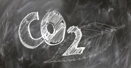 IMO 2050 Decarbonisation to Cost $1.1 Trillion