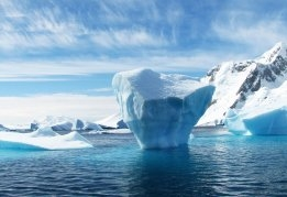 Cosco Should Avoid HFO in Arctic, says Green Group