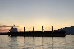 1 in 4 Vessels on Order Have Scrubbers