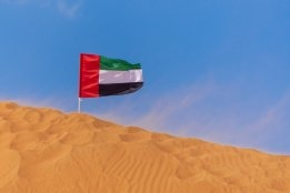 FUJCON: Vitol Sees Strong 2021 Rally in Fujairah Bunker Volumes