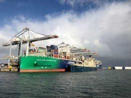One Stem Took Up 25% of Rotterdam's Fourth-Quarter LNG Bunker Volumes