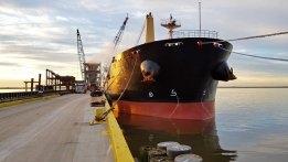 Bulk Carrier Starts Biofuel Trial at Port of Rotterdam