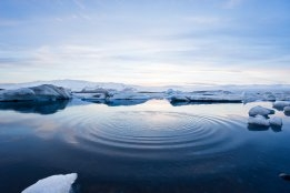 Environmentalists Criticise Loopholes in IMO Arctic Fuel Oil Ban