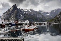 Clean Arctic Alliance Hails IMO Arctic Fuel ban Progress