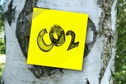 Covid-19 Takes Chunk out of Global CO2 Output