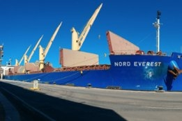 Bunker Saving Measures to Continue as Part of Dry Bulk Savings: Norden
