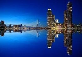 Rotterdam Bunker Sales Robust Amid Global Volume Slide