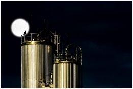 Petrobras Beefs up Singapore Presence