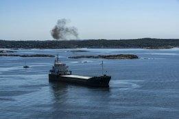 Bunker Supplier Trefoil Trading Launches Carbon Offset Service