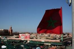 Tanger Med Sees Bunkering Growth Behind 2020 Liquid Bulk Throughput Increase