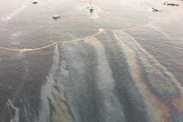 Bunker Spill Response Criticised in New Heiltsuk Nation Report