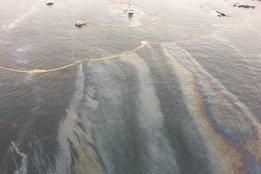 Bunker Spill Response Criticised in New Heiltsuk Nation Report