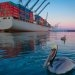Port of Long Beach Hails 88% Reduction in Diesel PM Emissions