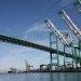 Covid-19 Positive Docker Closes LA Terminal: Report