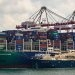 Total Hails France's First Ship-to-Boxship LNG Bunkering
