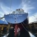 Gaslog Sees IMO 2050 Target Cutting Commercial Life of LNG Carriers