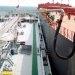 Singapore: Mandatory MFMs Bring No Big Change in Number of Licensed Bunker Surveyors