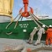 SAL Heavy Lift Takes on Inatech Bunker Procurement Software