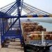 Adani Eyes Expansion of Its Bunker Business