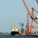 D'Amico Mulls Eco-bulker Buys