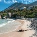 South Africa: Bunkering Threat to Penguin Colony