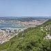 Gibraltar Bunker Calls at Three-Month High