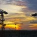Singapore: Oil Exports Fall in January