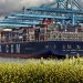 CMA CGM Favours 0.50% Bunkers for IMO 2020 Compliance