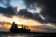 Dry Bulk Ships With Scrubbers Could Command Premium Come IMO2020: analyst