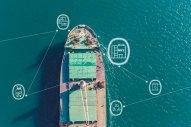 Bureau Veritas Launches New 'Ammonia-Prepared' Standard for Ships