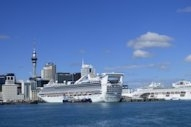 Ports of Auckland Look to Shore Power for Berthing Cruise Vessels