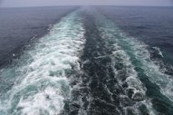 InSciTe Draws Nearer to Lignin-Derived Marine Fuel