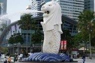 Singapore Posts Record H1 Bunker Sales Despite Surprise Slump in June