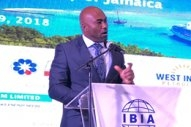 Jamaica Outlines Ambition for Bunker Market Growth