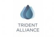 Sulfur Regs Group Trident Alliance Wound Up at End of 2020